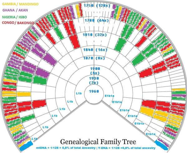 Genealogical-Family-Treeaaa
