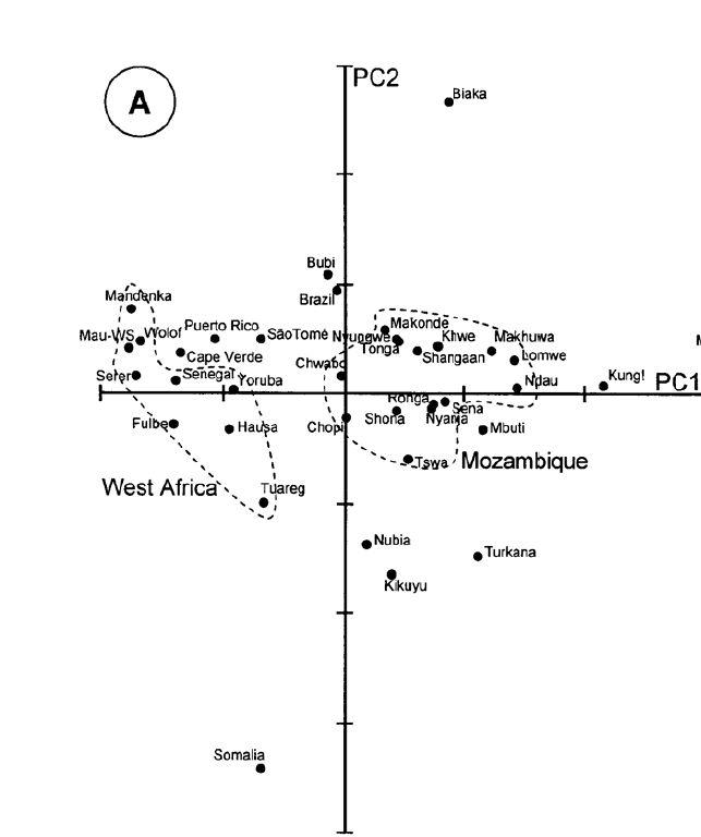PR mtDNA -PCA plot