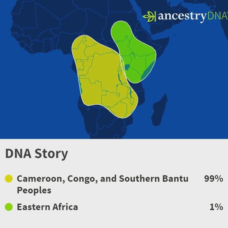 BNT - DRC2