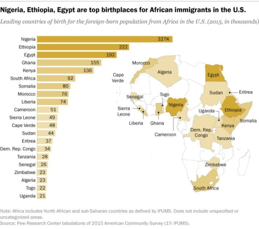 African migrants in USA