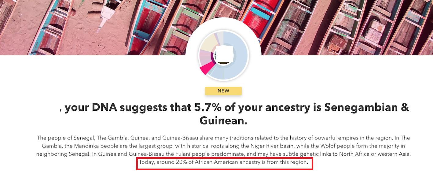 AA's 20 percent Senegambiana